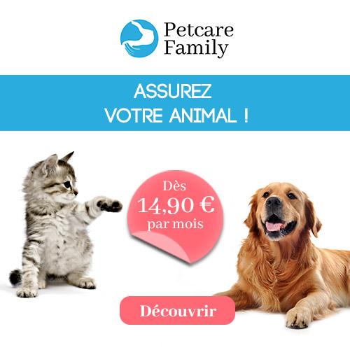 Petcare Assurance