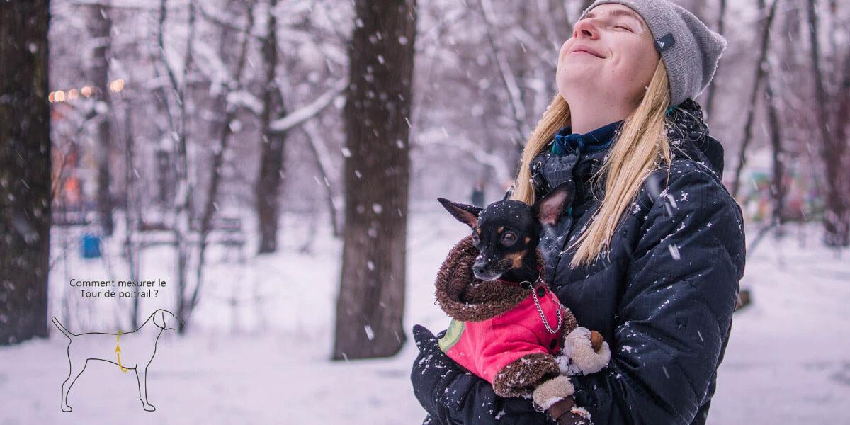 Comment mesurer la taille du manteau de son chien ?