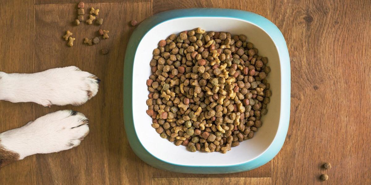 Aliment sans céréales et sans gluten pour chien ou chat