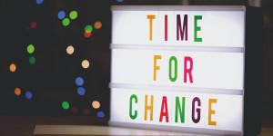 Quand changer de litière ?