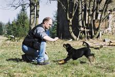 Enseigner à votre chien l'obéissance au rappel, partie 3