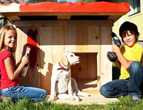 Les niches pour chien