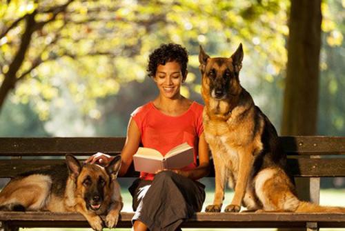 Welchen Ort zum Leben für Ihren Hund?