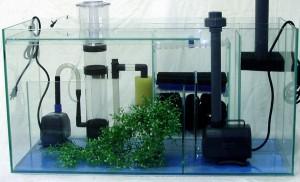 Les différents systèmes de filtration de l'aquarium