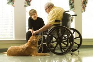 Faire venir un chien dans une maison de retraite