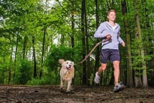 Le cross canin, un sport à pratiquer avec son chien