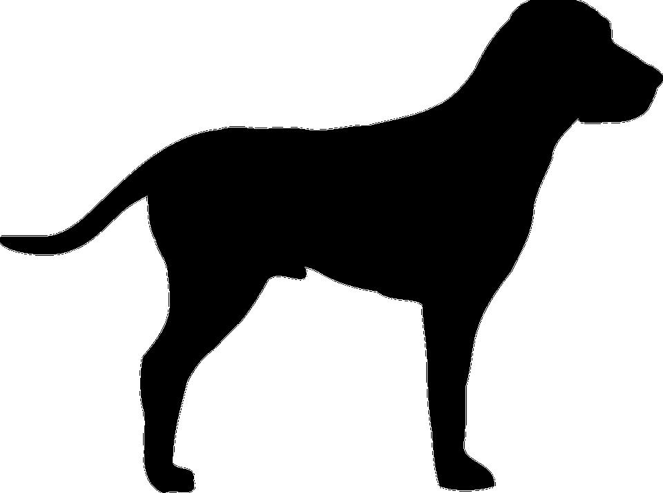 Croisé