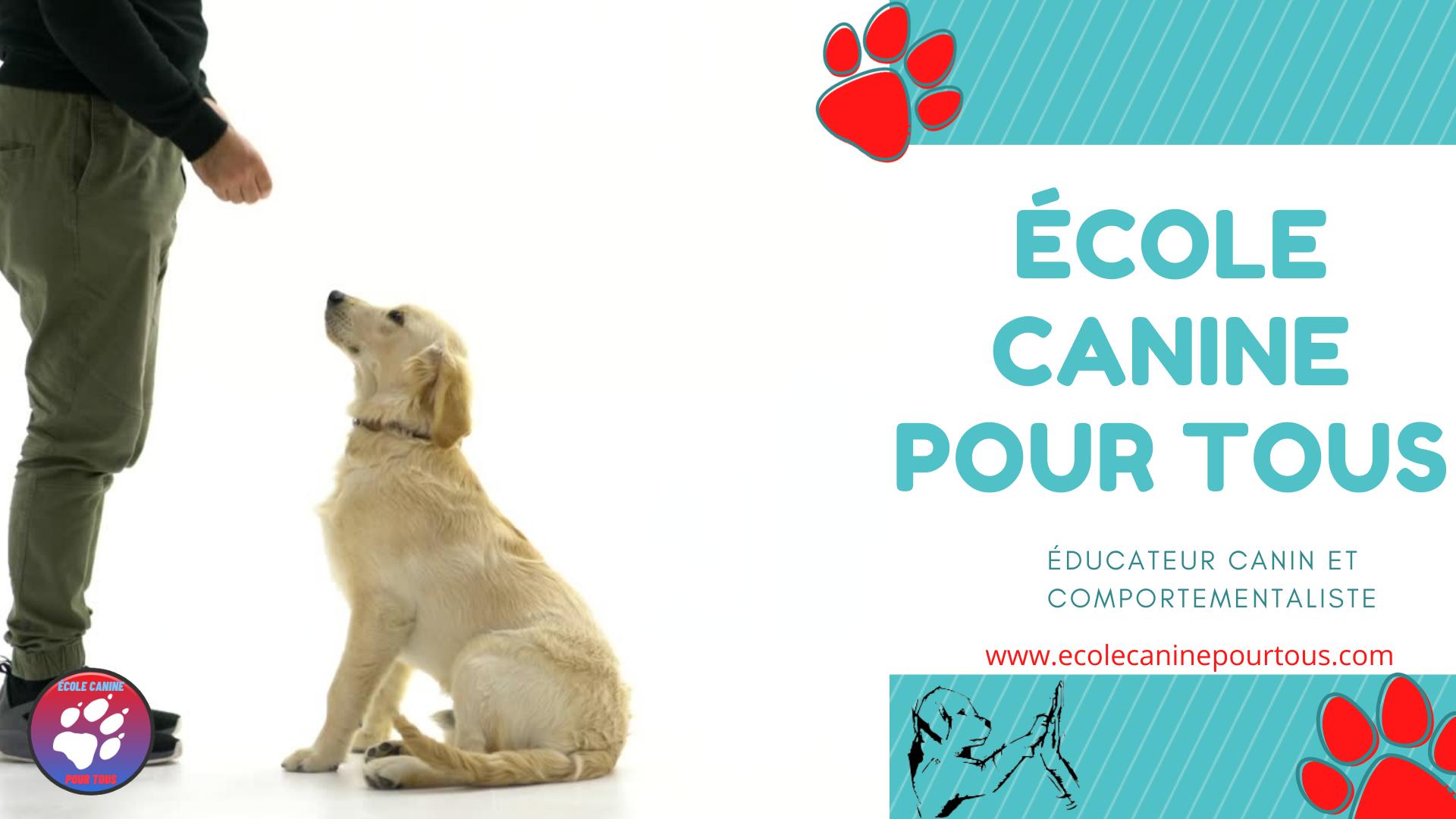 ÉCOLE CANINE POUR TOUS, éducateur comportementaliste canin