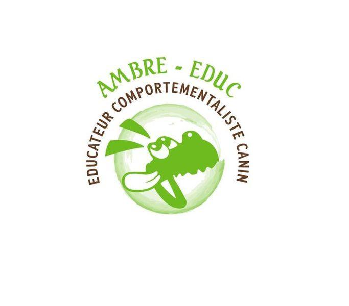 AMBRE EDUC education comportement*