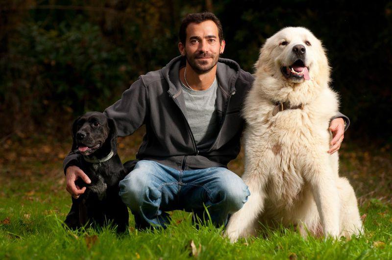 O PIED Educateur comportementaliste canin dans la Vienne*