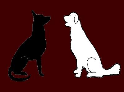 BON SENS CANIN educateur canin Johanna Dabin*