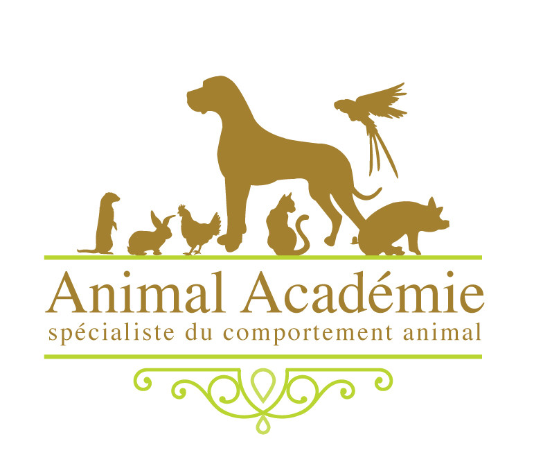 ANIMAL ACADEMIE Spécialiste du comportement animal