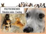 POLYTECHNICHIEN Education Canine et Coaching*