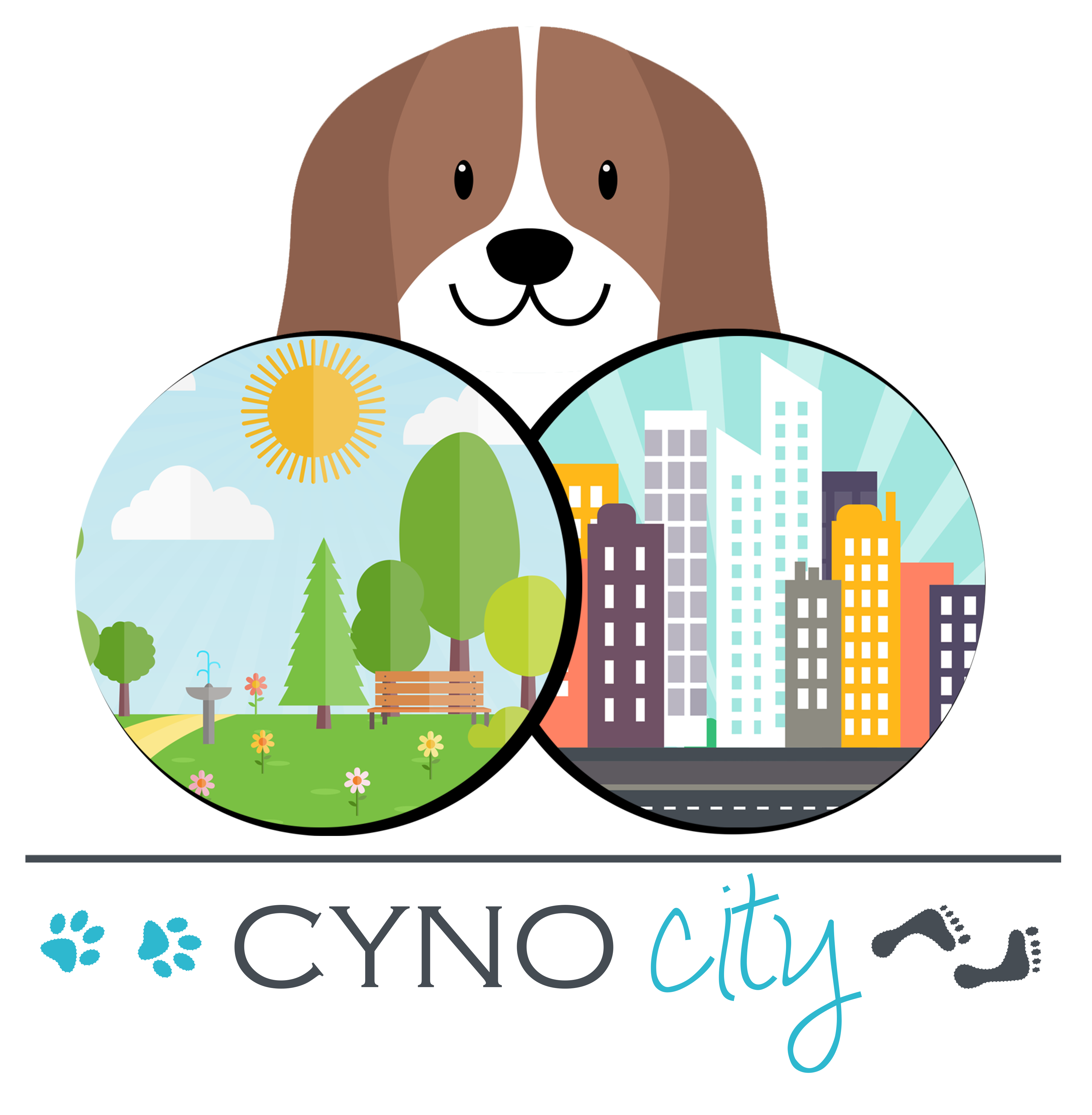 CYNOCITY réeducation comportementale loisirs canins