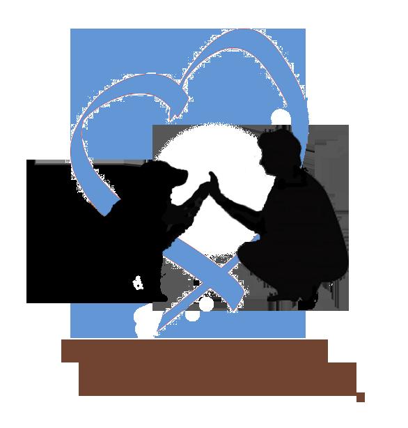 TEENA & CO Educateur Canin Comportementaliste à domicile*