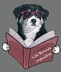 EDUCATEUR CANIN OISE conseil en comportement*