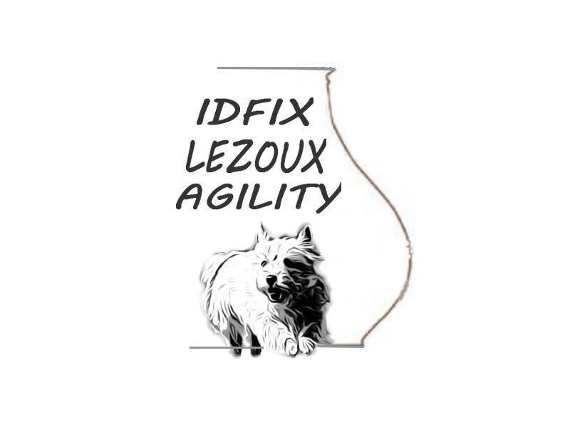 Club éducation Idfix lezoux agility *