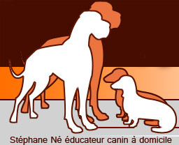 STEPHANE NE Educateur comportementaliste canin*
