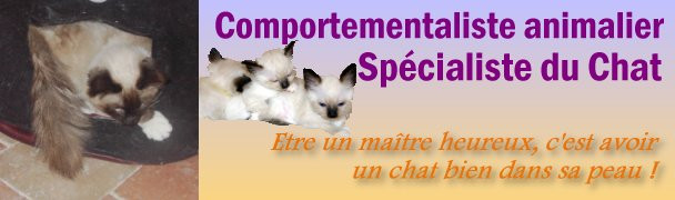 MARIE HELENE BONNET Comportementaliste animalier - Spécialiste du Chat