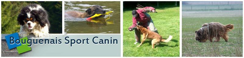Bouguenais sport canin *