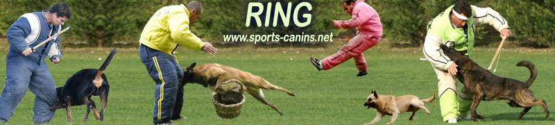 Sports canins, Ring, Mondioring, Campagne, Pistage, RCI, Obeissance*