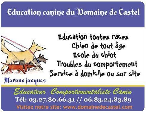 DOMAINE DE CASTEL Jacques MARONE Éducateur Comportementaliste Canin