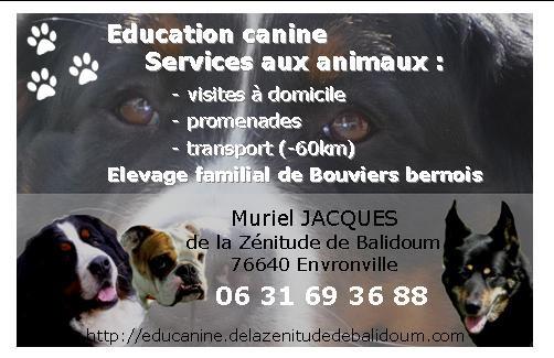 Muriel JACQUES education canine services aux animaux*