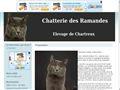 Chatterie DES RAMANDES Chartreux*
