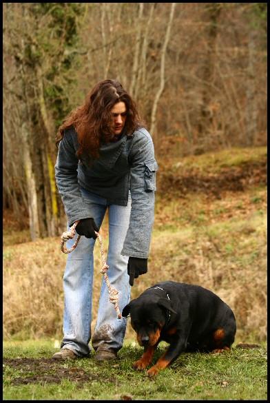 EDUC TON TOUTOU NOLWEN BELLIER Education canine Troubles du comportement*