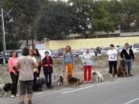 Club education canine PARENTIS EN BORN - BISCARROSSE *