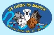 Education canine LES CHIENS DU MANTOIS *
