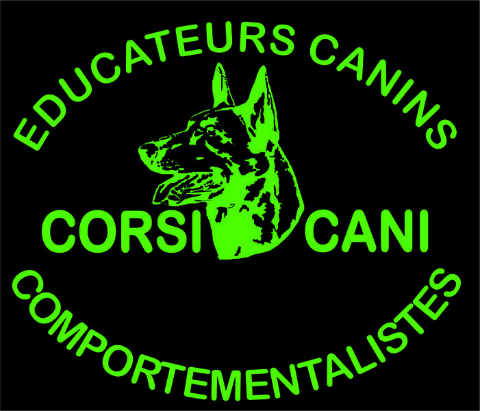CORSI CANI centre d education