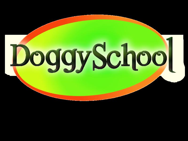 DOGGY SCHOOL Caroline RUOTTE Educateur Canin Comportementaliste à domicile