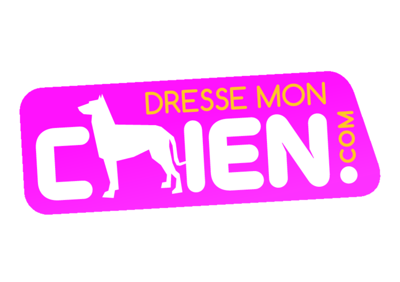 DRESSE MON CHIEN .COM Éducateur canin comportementaliste*