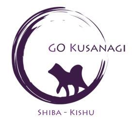 Elevage GO KUSANAGI Shiba Inu