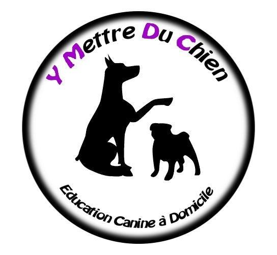 Y Mettre Du Chien éducation canine à domicile *