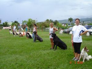 Club Canin de Pirae TAHITI