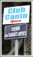 CLUB CANIN DU MANTOIS, à ROSNY SUR SEINE*