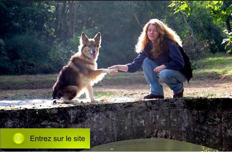 EDUCATION CANINE.FR Julia DEUBEL éducation et comportement canin*
