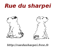 RUE DU SHARPEI : le guide pratique du shar-pei*