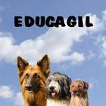 EDUCAGIL Dressage éducateur canin Comportementaliste *