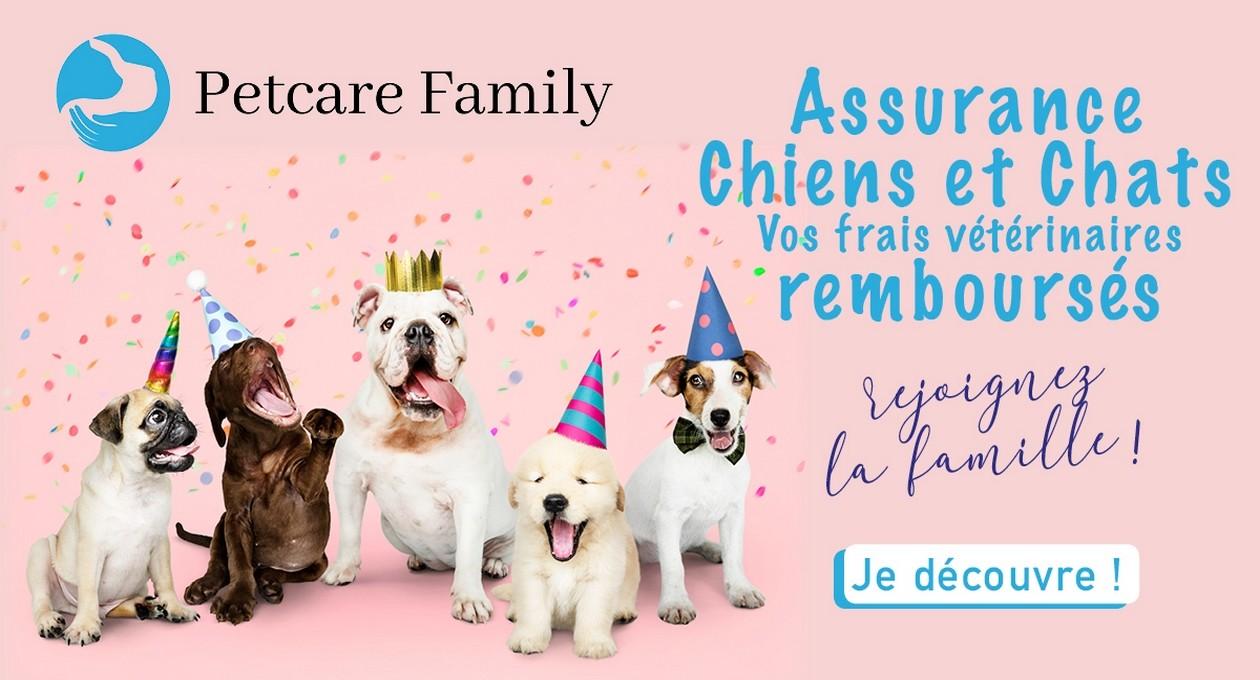 Assurance chien et chat Petcare Family