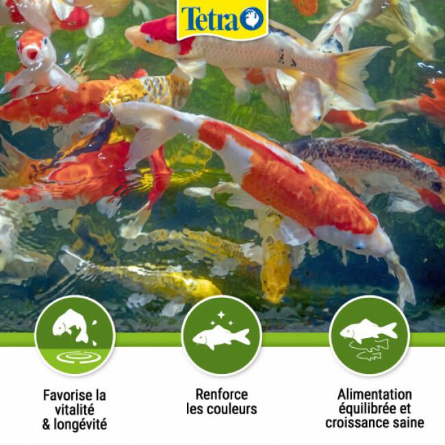 Alimentation Tetra Pond Koï Sticks pour poissons de bassin