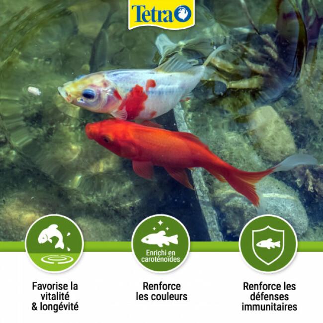 Alimentation Tetra Pond Sticks pour poissons de bassin