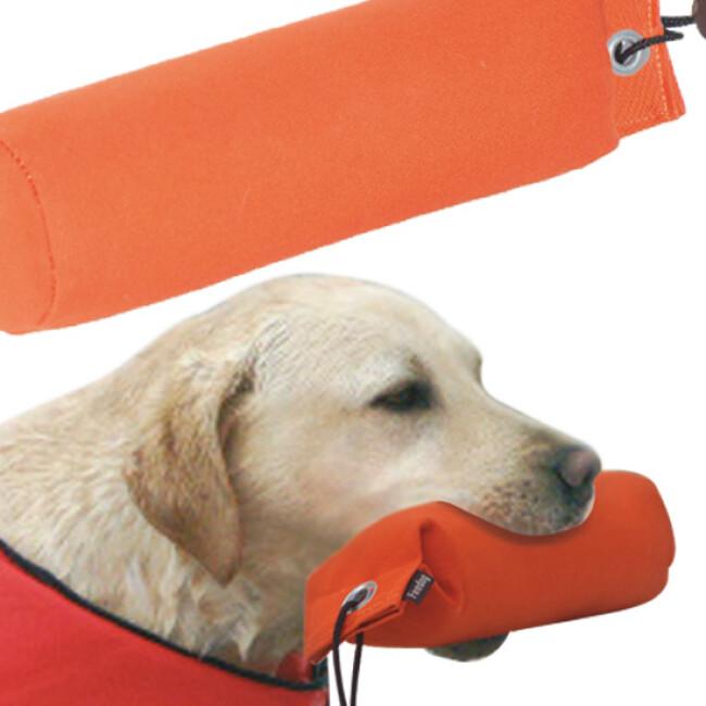 Apportable flottant en tissu pour chien