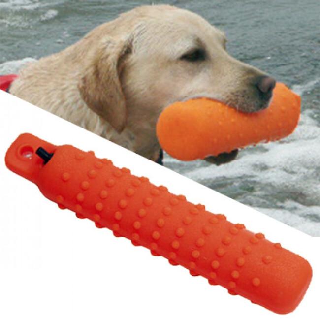 Apportable flottant vinyle pour chien
