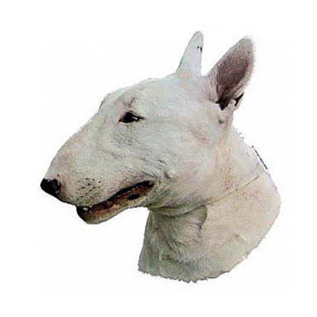 Autocollant race Bull Terrier