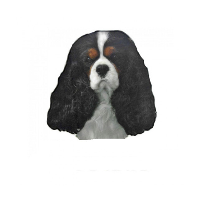 Autocollant race Cavalier King Charles Tricol