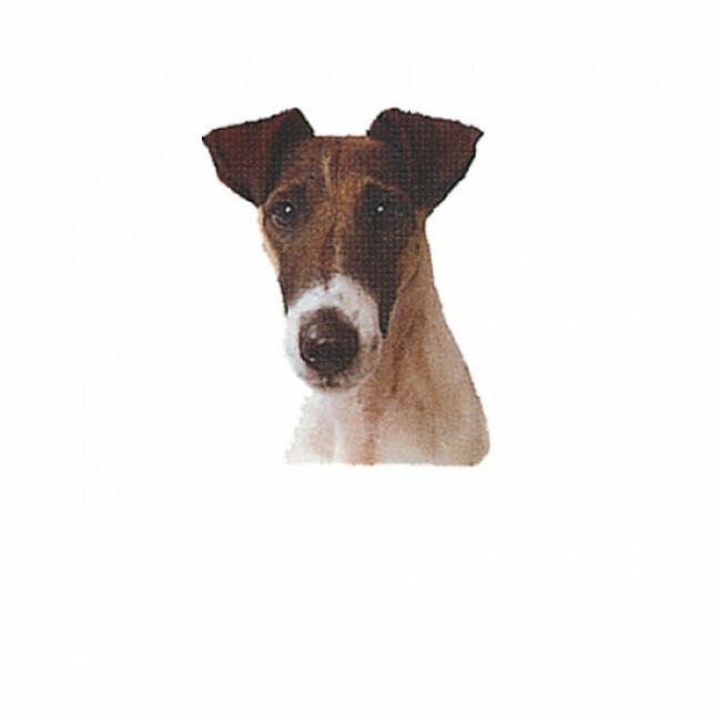 Autocollant race Fox Terrier Poil Lisse