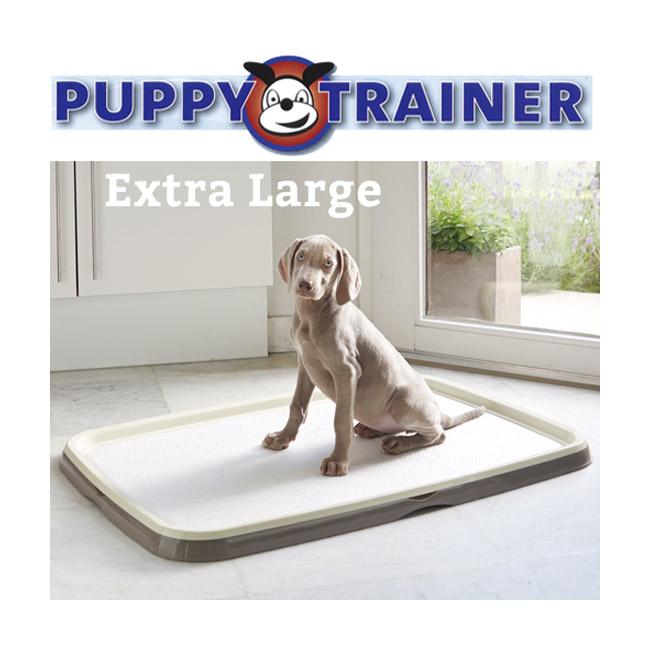 Bac et tapis éducateur Starter kit puppy trainer tapis absorbeur d'urine chiot